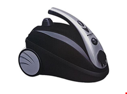 بخارشوی دلمونتی مدل DL 200